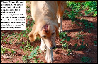 TILLETT Vivien dog also attacked Feb102011 Mtubatuba ZULULAND OBSERVER