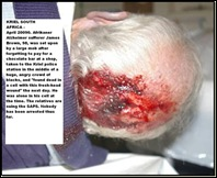 Brown James 98 Alzheimer sufferer arrested for forgetting to pay for chocolate bar KRIEL SAPS beaten to death in KRIEL cell_2