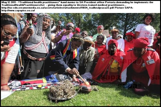 TRADITIONAL HEALTH PRACTITIONERS ACT ZUMA MUST IMPLEMENT IT MAY122011