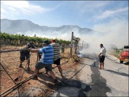 HEXRIVER FARMERS TRY TO SAVE THEIR VINEYARDS FROM TORCHING NOV92012