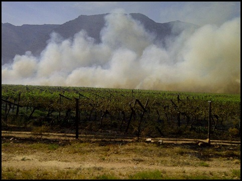 HEXRIVIER 2 VINYARDS BURNING BY PROTESTORS WHO DEMAND MORE JOBS